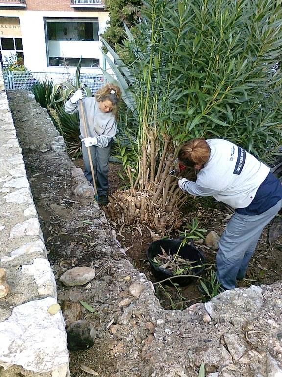 Tarragona Impulsa posa en marxa Reinicia't, el programa de suport a la inserció laboral de majors de 50 anys
