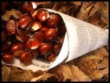 La venda de castanyes per Tots Sants comença el dilluns 28 d'octubre