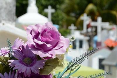 Comença el termini de presentació de les sol·licituds per a l'adjudicació dels llocs de venda de flors amb motiu de la festivitat de Tots Sants