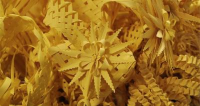 Obert el termini per a la venda de palmes i palmons a Tarragona