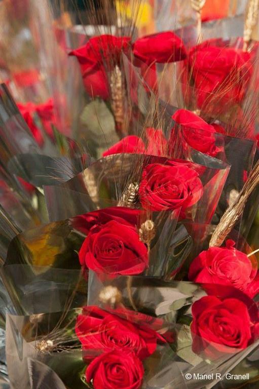 Tarragona gaudirà de Sant Jordi amb 218 parades
