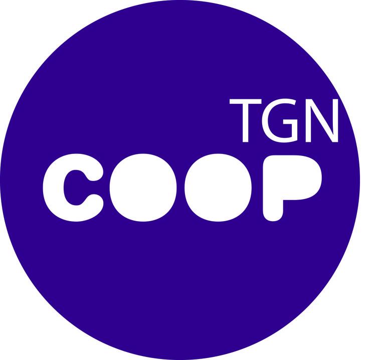 S'aproven les Normes de Funcionament del Consell Municipal de Solidaritat i Cooperació de Tarragona