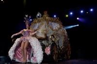 Cromatic Fusion amb 'La màgia de les fades' guanya la Disfressa d'Or del Carnaval de Tarragona