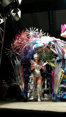 L'AV L'Albada guanya la Disfressa d'Or del Carnaval de Tarragona 2014