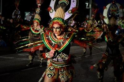 S'aprova el reglament de la Comissió Consultiva de Carnaval