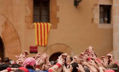 Actes amb motiu de la Diada Nacional de Catalunya