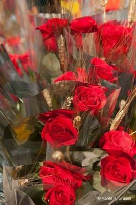 Tarragona gaudirà de Sant Jordi amb 202 parades al carrer