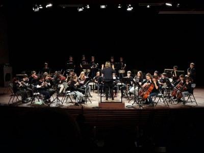 L'Orquestra de Nivell Elemental a les Pinzellades Musicals