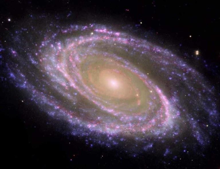 La Galàxia a l'IMET