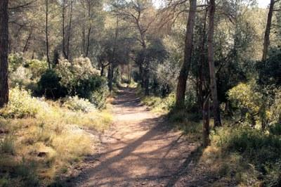 """""""Tarragona, véns a la muntanya?"""" 2012"""