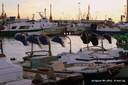 moll de pescadors 2