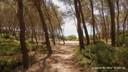 Bosc de la Marquesa