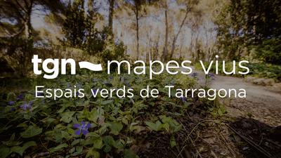 L'Ajuntament de Tarragona crea Mapes Vius, un producte digital que s'enceta amb l'story map d'espais verds de Tarragona Vila Florida