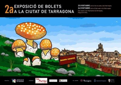 El 23 i 24 d'octubre, II Exposició de bolets a la ciutat