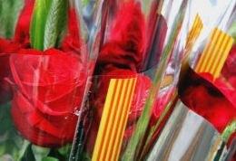 Tarragona comptarà amb 250 parades en la Diada de Sant Jordi
