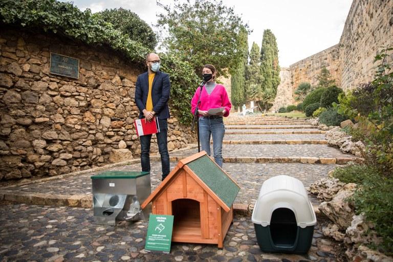 En marxa la prova pilot de colònies de gats ferals que l'Ajuntament ha activat a 16 colònies de la ciutat de Tarragona