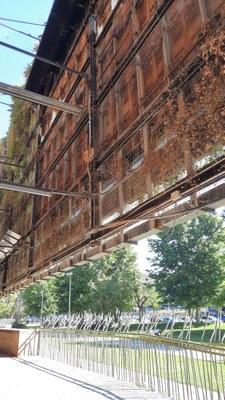 L'Ajuntament desmuntarà el jardí vertical de la Tabacalera pel seu estat de degradació