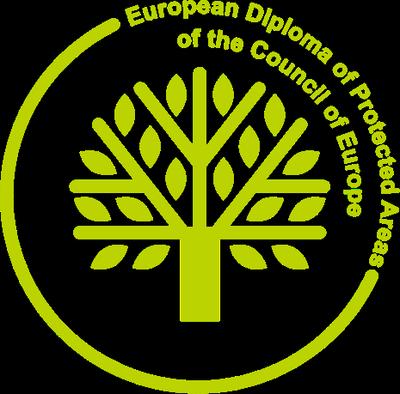 Tarragona rebrà aquest any 2020 el Diploma Europeu, una distinció del Consell d'Europa