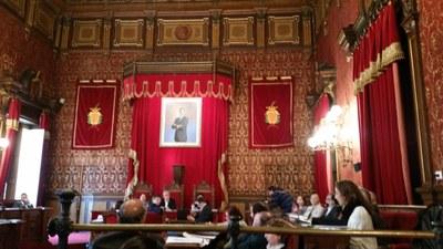 Mocions aprovades en el darrer plenari, el 25 de gener