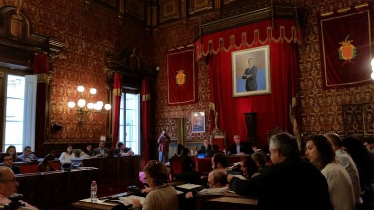 Acords adoptats al Consell Plenari de 18 de novembre