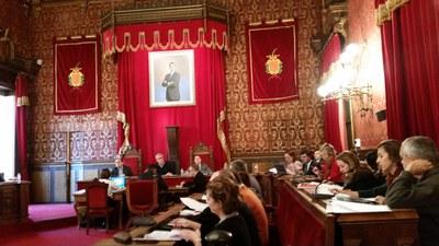 Mocions aprovades en el darrer plenari, el 19 de febrer