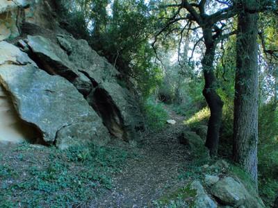 Camí de la Font del Garrot