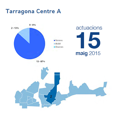 Estadístiques BIR maig - Centre A