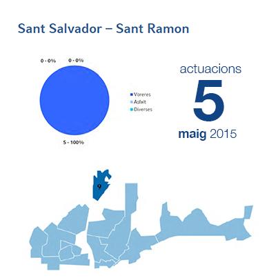 Estadístiques BIR maig - Sant Salvador