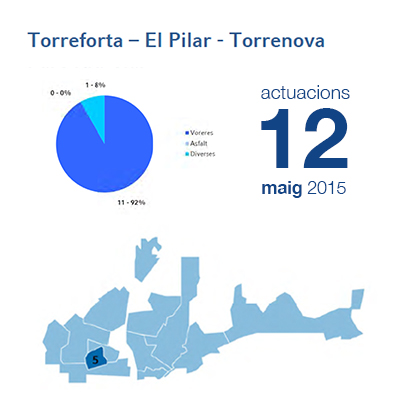 Estadístiques BIR maig - Torreforta