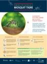 El proper dilluns comença la campanya preventiva del mosquit tigre