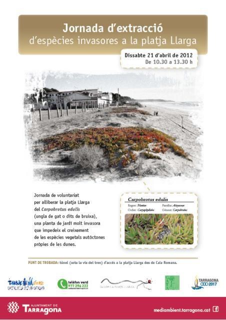 Aquest dissabte es farà una jornada de voluntariat per extraure plantes invasores a la platja Llarga