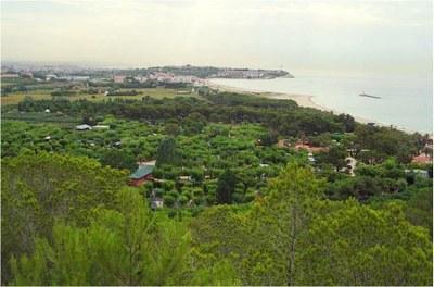 Pla d'espais verds de Tarragona