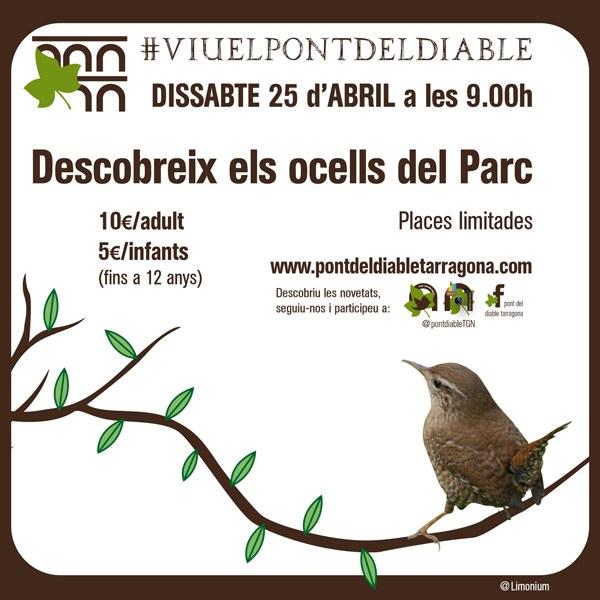 Ocells del Parc Ecohistòric del Pont del Diable