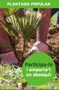Dissabte 19 de novembre plantada popular a Sant Salvador