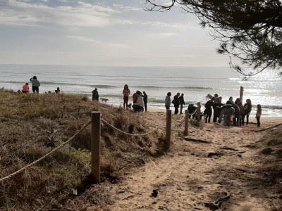 Recuperem la platja Llarga