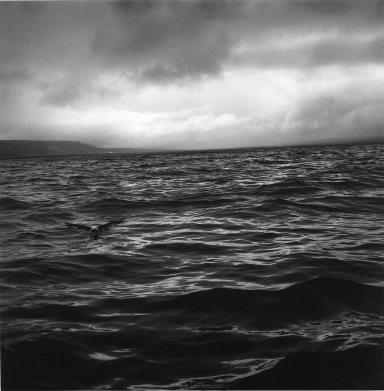 Inauguració de l'exposició fotogràfica de Christopher Taylor sobre Islàndia