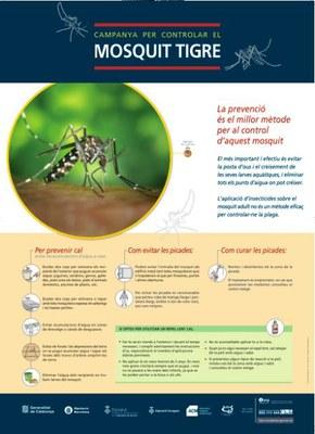 Comença la campanya d'informació per controlar el mosquit tigre