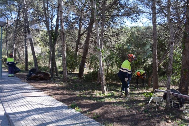 Comencen els treballs per crear una franja de protecció d'incendis en una finca municipal de La Móra