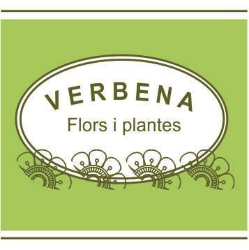 Verbena. Flors i plantes